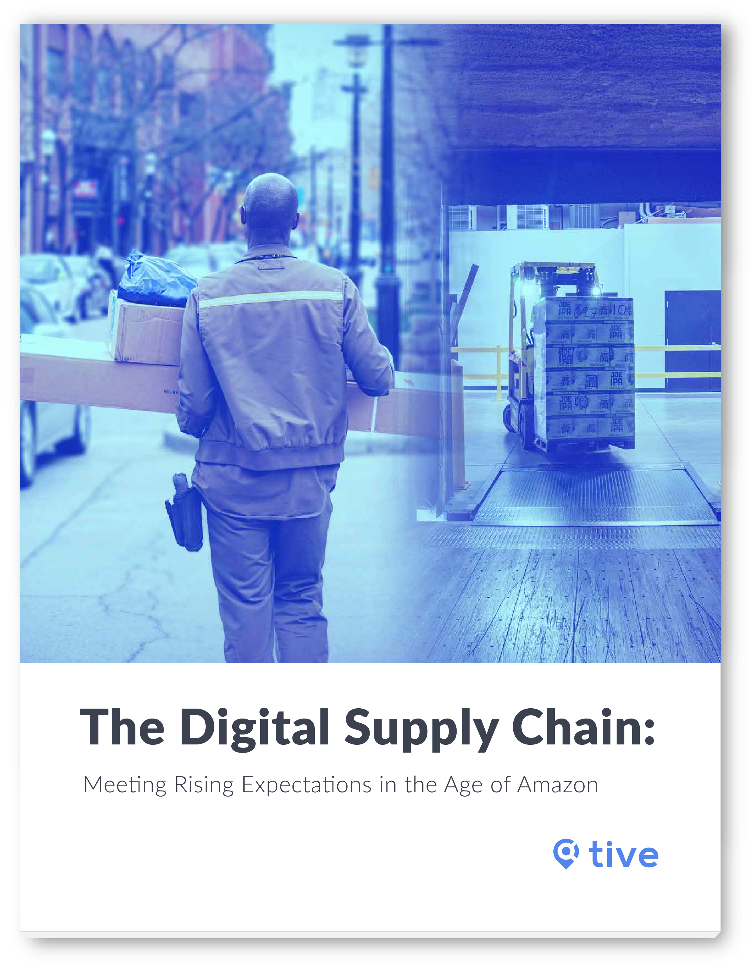 The Digital Supply Chain: Meeting Rising Expectations in the Age of Amazon